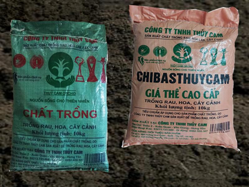 Mua đất trồng rau ở đâu giá rẻ tại Hà Nội?
